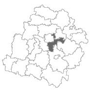lodzkiwsch